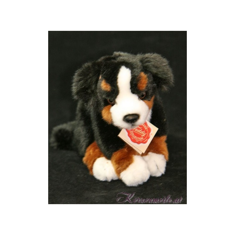 Berner Sennenhund Plüschtiere-Hermann Teddy Collection
