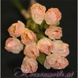Blumen creme-apricot