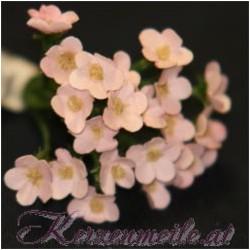 Kleine Blümchen rosa