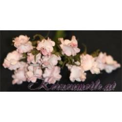 Blümchen rosa