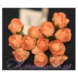 Röschen lachs-orange