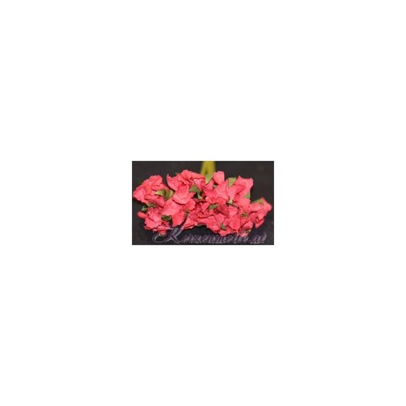 Blümchen rosa-rot